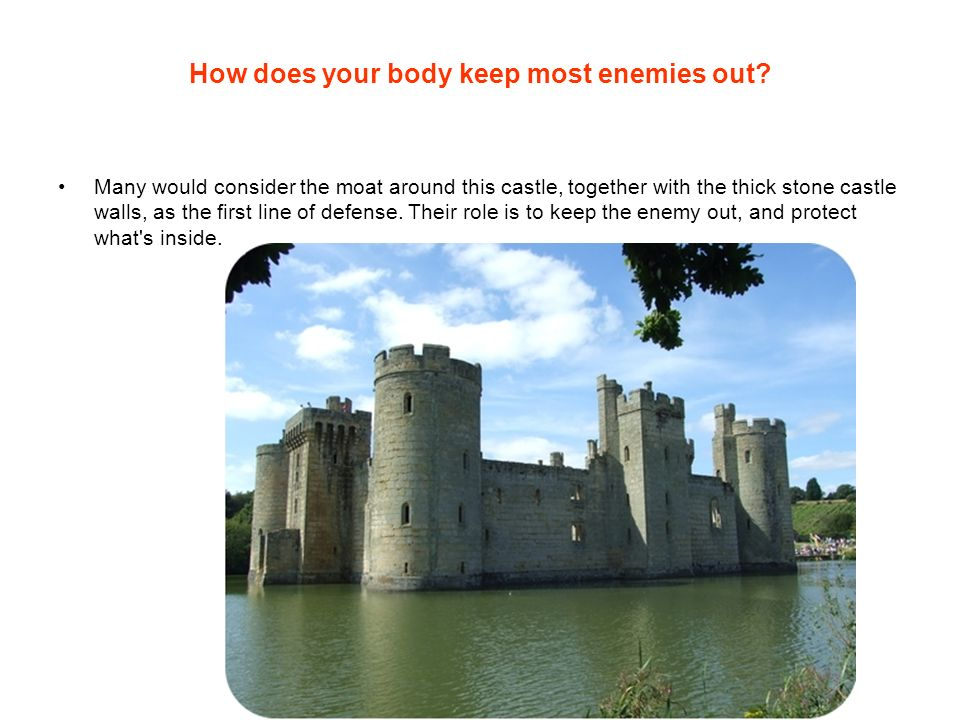 How does your body keep most enemies out