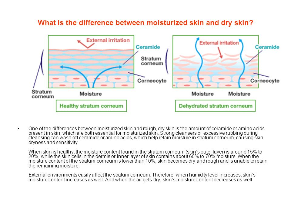 What is the difference between moisturized skin and dry skin