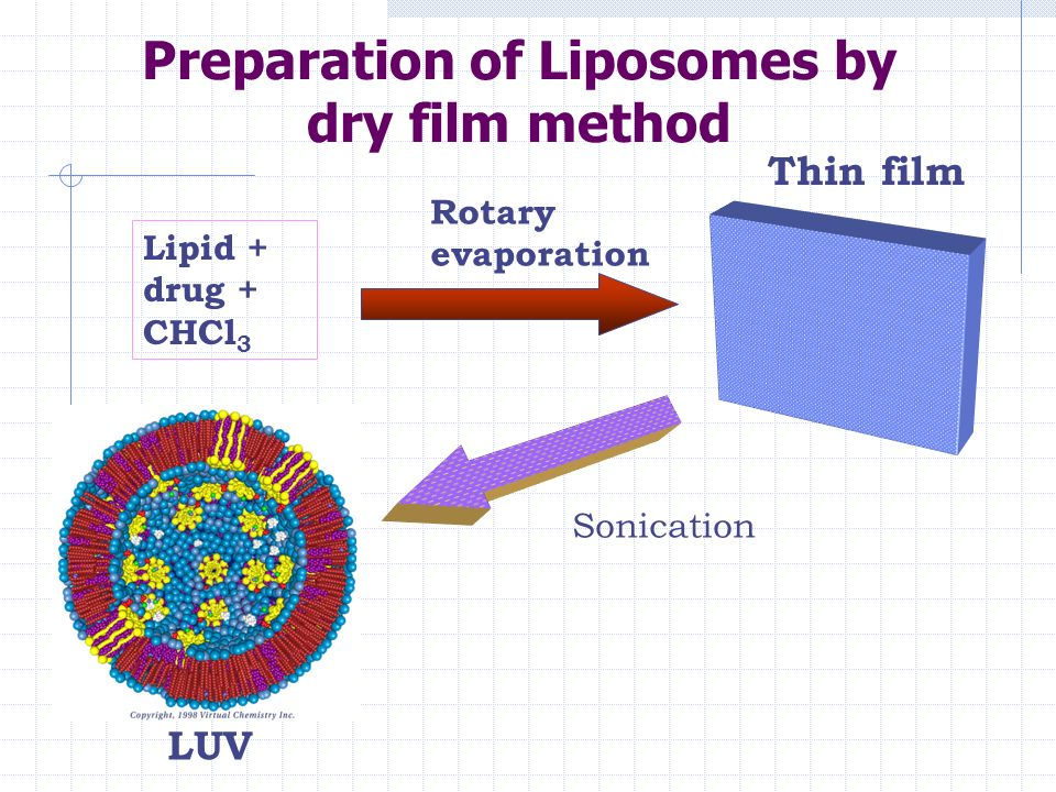 Liposomes |authorstream.