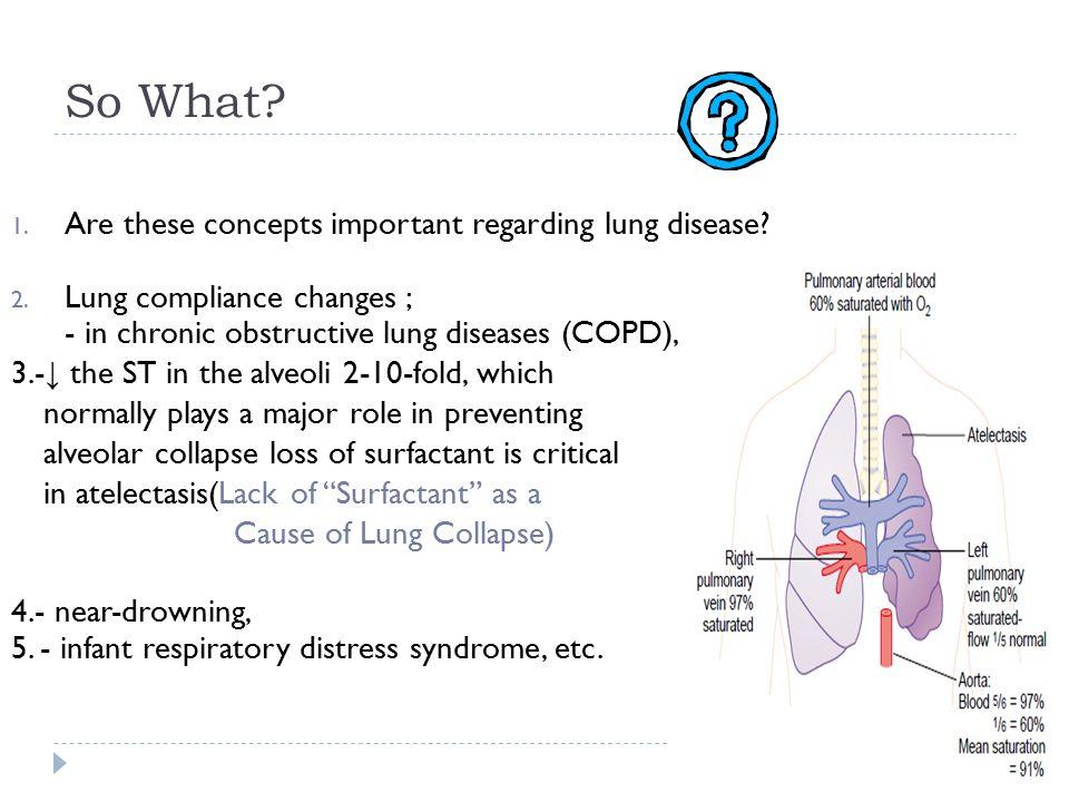 Pulmonary Ventilation Ppt Video Online Download