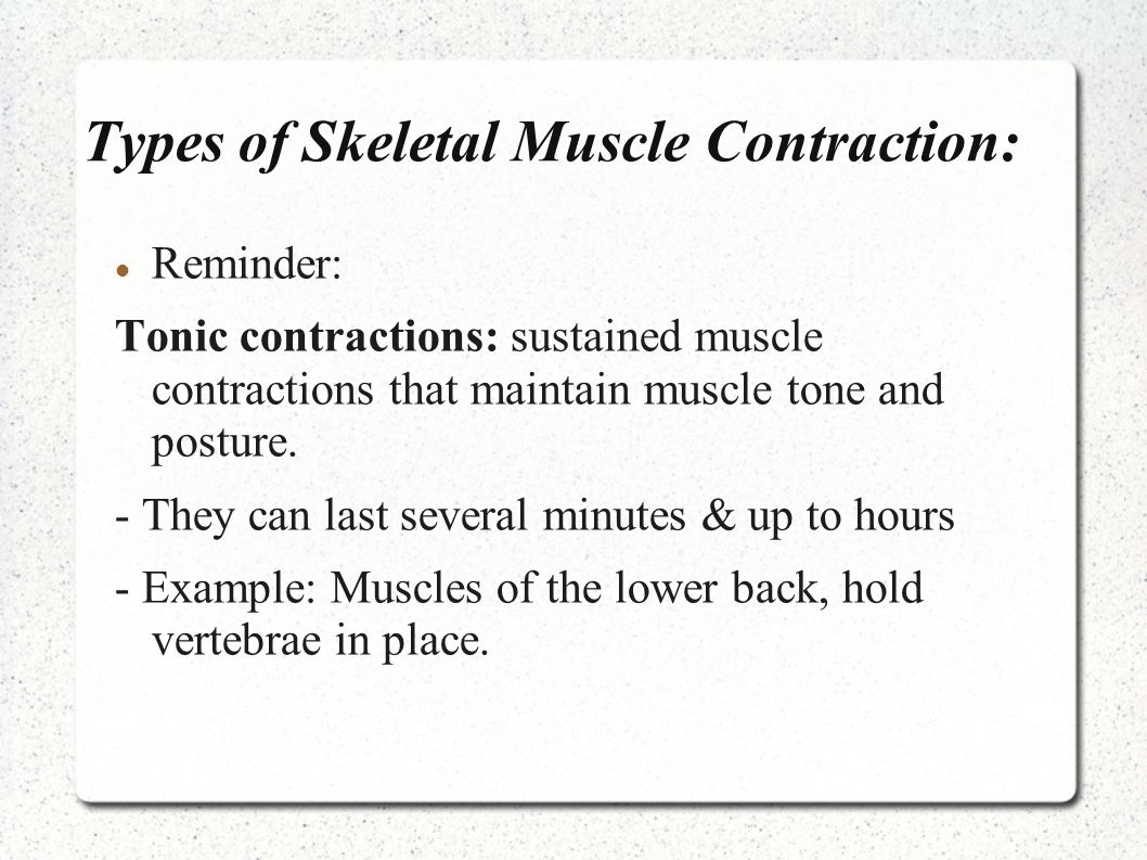 Unit Muscular System Types Of Skeletal Muscle Contractions