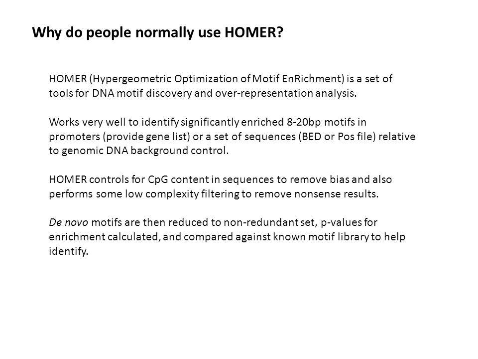 homer motif