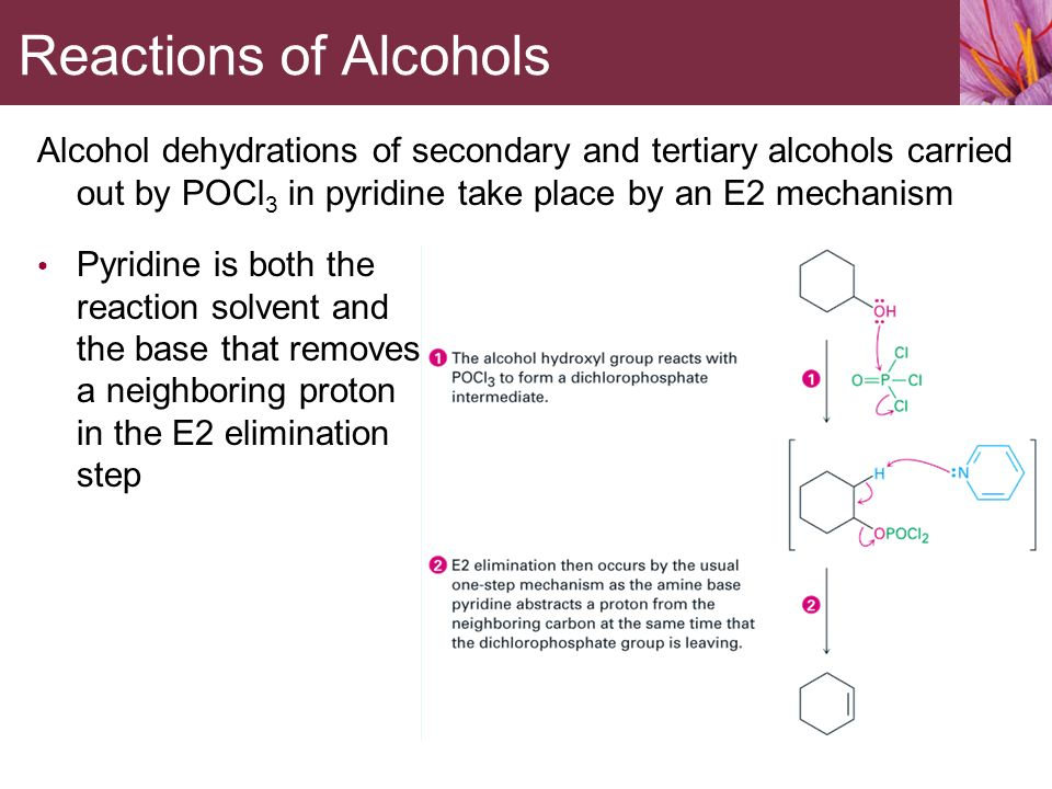 Alcohols Phenols And Ethers Ppt Download