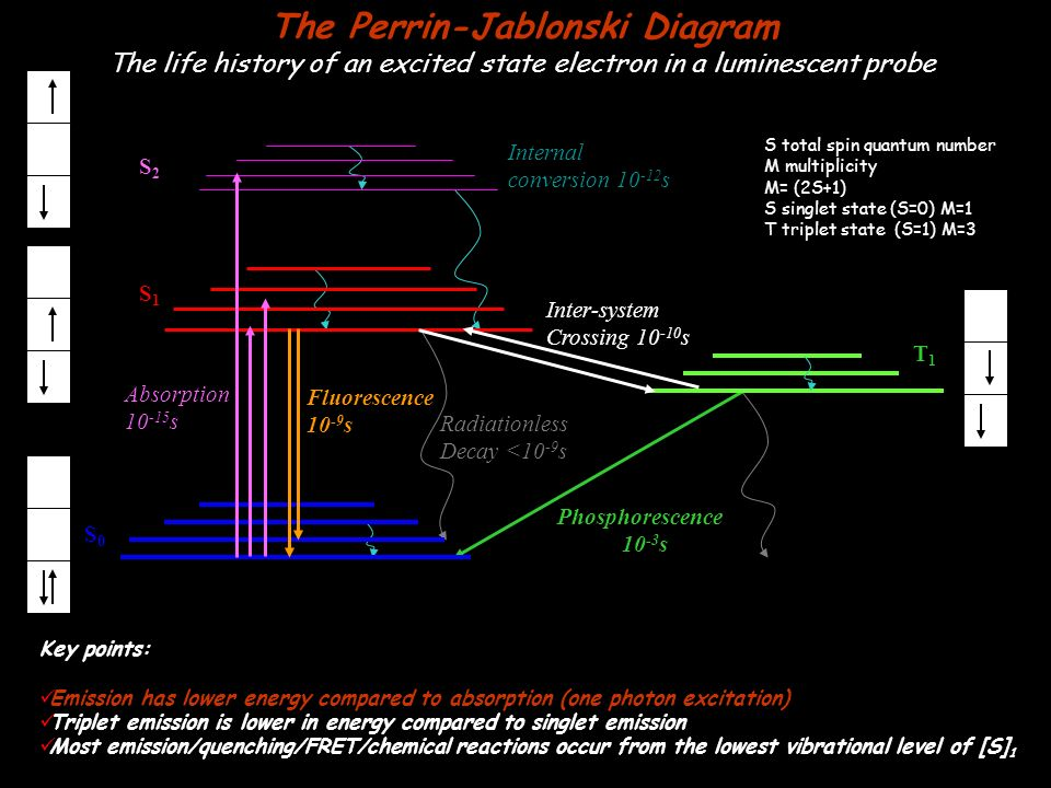 The Perrin Jablonski Diagram Ppt Video Online Download