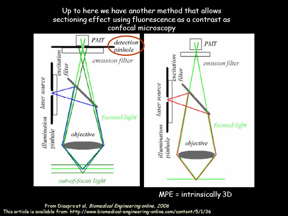 The perrin jablonski diagram ppt video online download 25 from ccuart Image collections