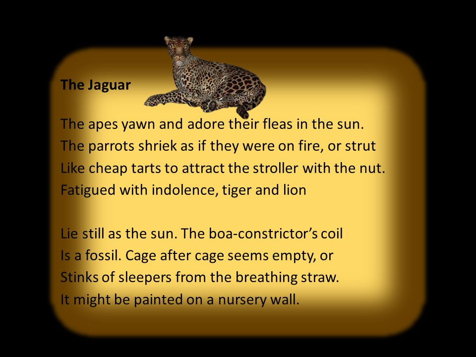 symbolism in the poem jaguar by ted hughes