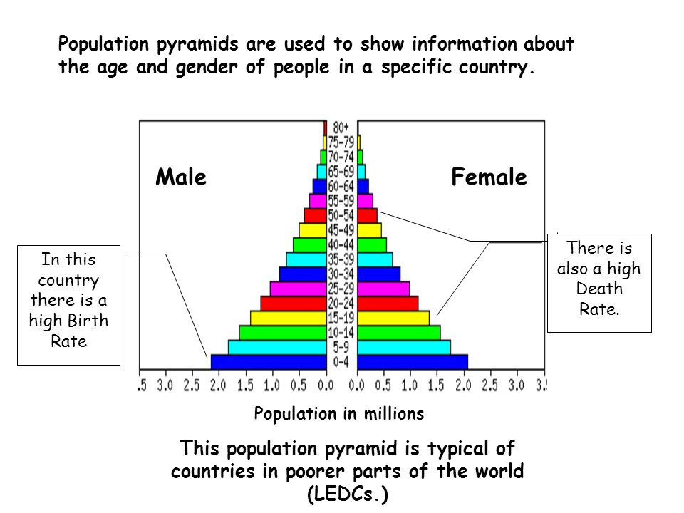 Population pyramids key idea key words ppt video online download 4 population in millions ccuart Image collections