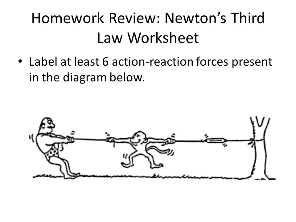 Newtons third law diagram practice auto electrical wiring diagram review for quiz review homework quiz overview in class review rh slideplayer com newtons third law newtons third law of motion diagram ccuart Images
