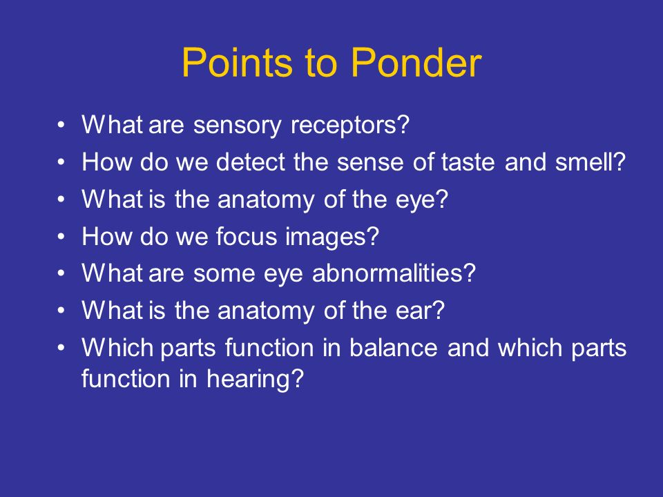 Chapter 14 The Senses Ppt Video Online Download