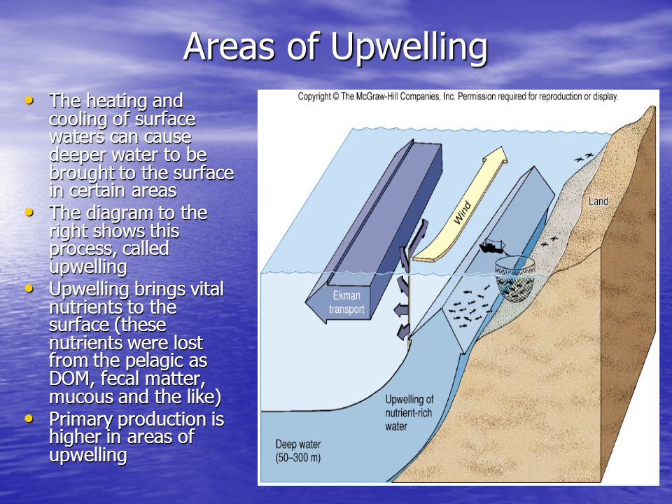 Chapter 15 lecture slides ppt video online download areas of upwelling the heating and cooling of surface waters can cause deeper water to be ccuart Choice Image