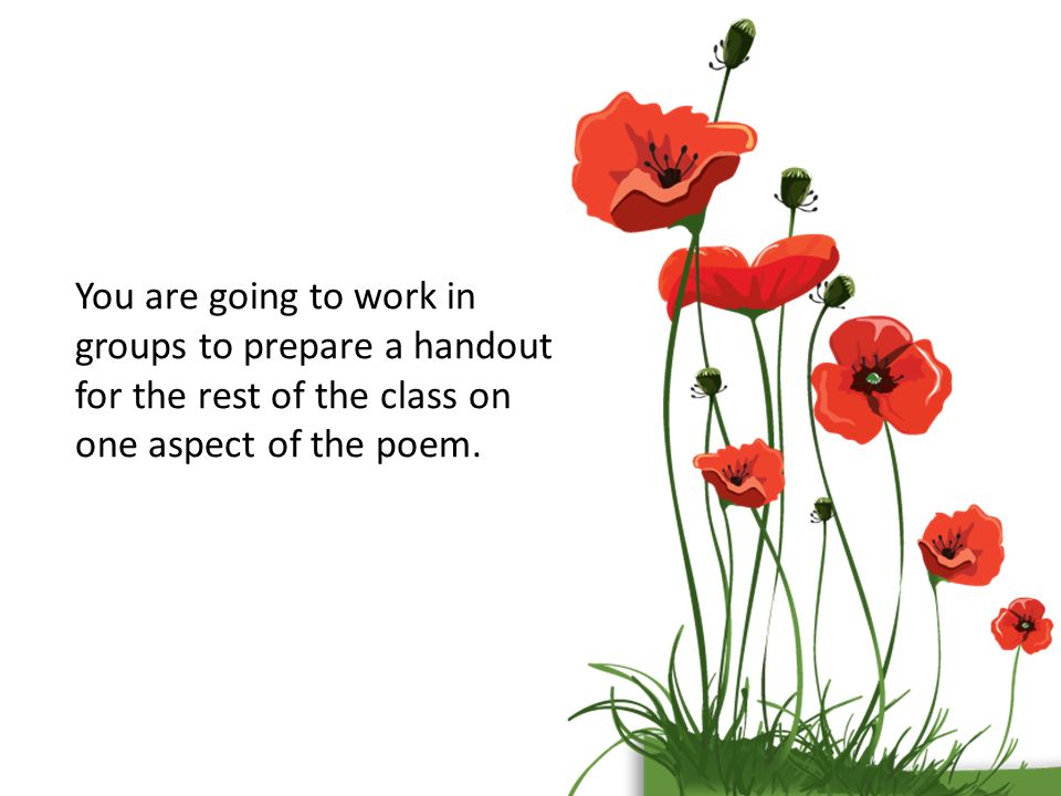 Poppies by jane weir ppt video online download 26 you are going to work in groups to prepare a handout for the rest of the class on one aspect of the poem mightylinksfo