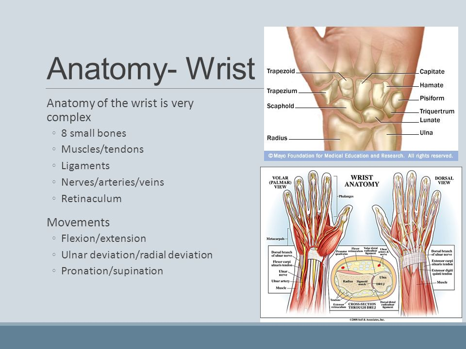Injuries To The Wrist Hand And Fingers Ppt Video Online Download