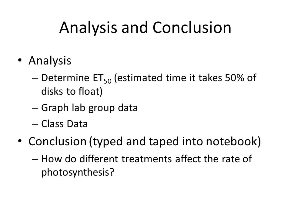 photosynthesis lab conclusion