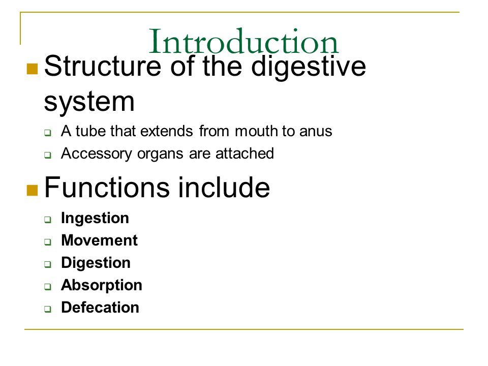 General Anatomy Of The Digestive System Ppt Video Online Download