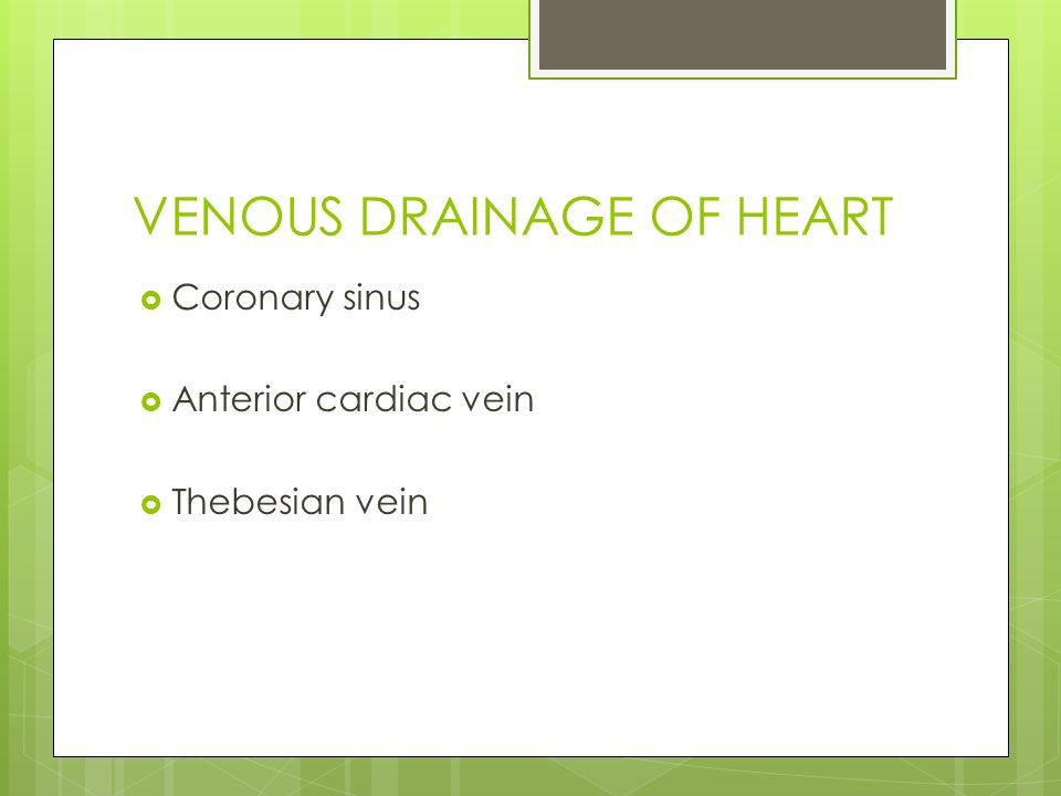 ANATOMY OF CORONARY SINUS AND CLINICAL APPLICATION - ppt video ...