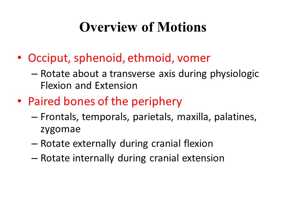 Overview of Motions Occiput, sphenoid, ethmoid, vomer