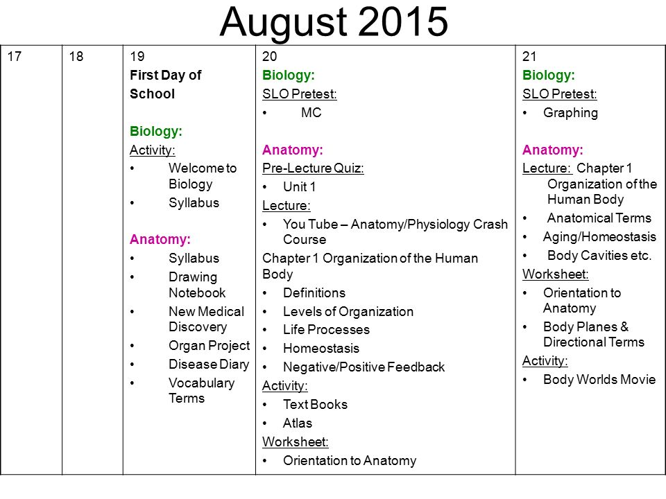 August First Day of School Biology: Activity: - ppt download