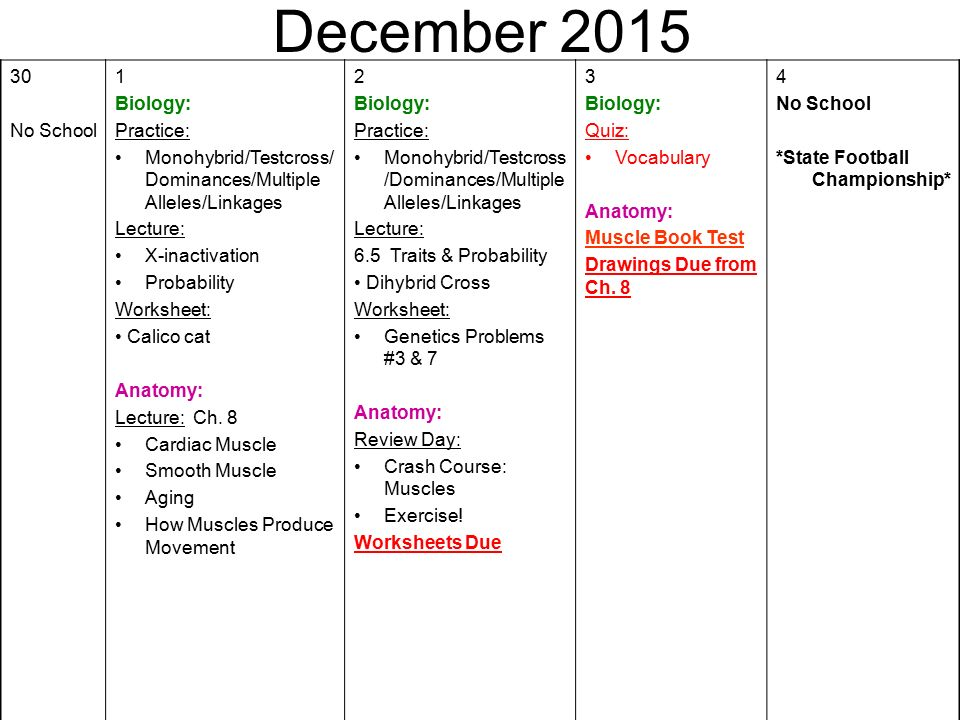 December 2015 30 No School 1 Biology Practice: Chapter 6 Dihybrid Cross Worksheet Answer Key At Alzheimers-prions.com