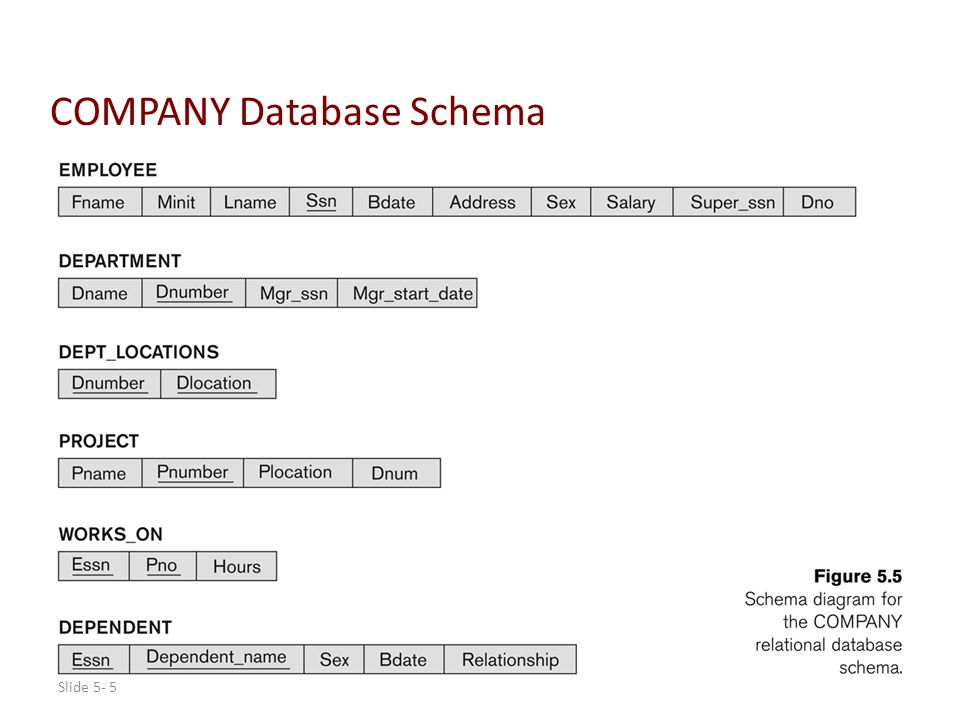 Example Company Database Ppt Download