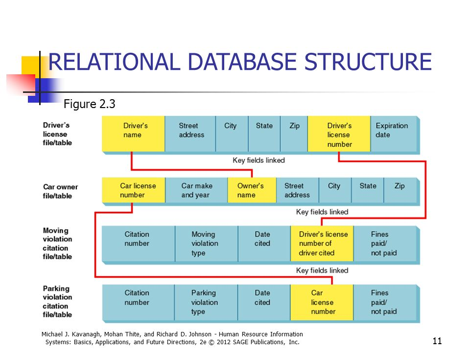 Database Concepts And Applications In Hris Ppt Video
