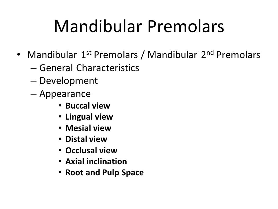 Attractive Maxillary 1st Premolar Anatomy Embellishment - Anatomy ...