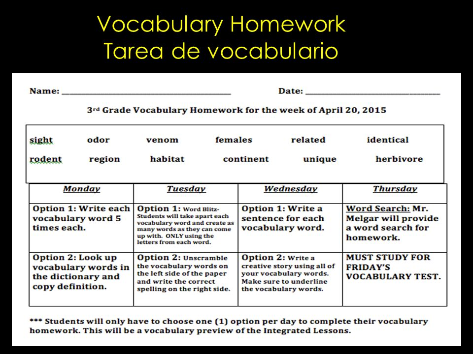 vocabulary homework ideas for 3rd grade