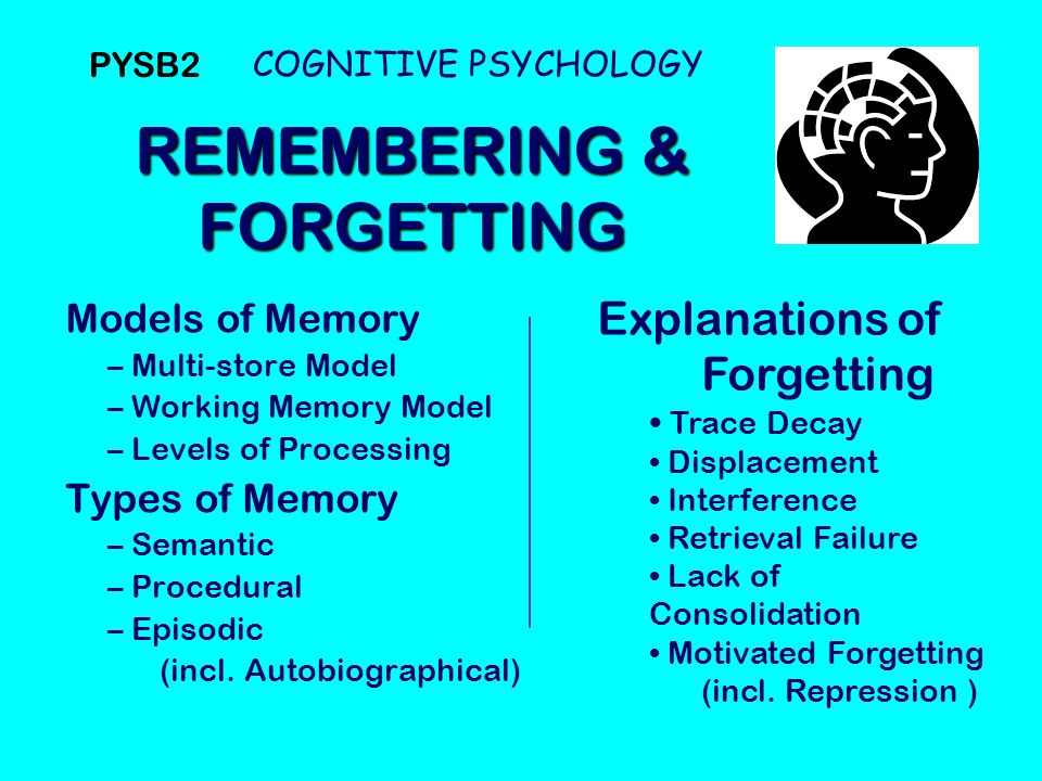 Psychology of learning exp4404 chapter 11: memory and forgetting.