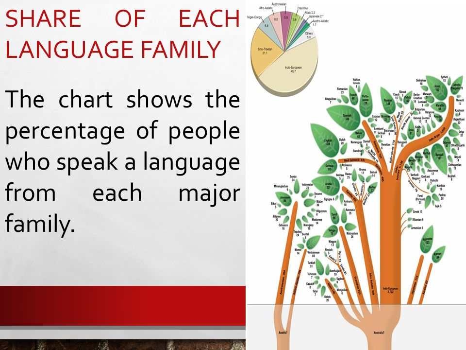Share Of Each Language Family