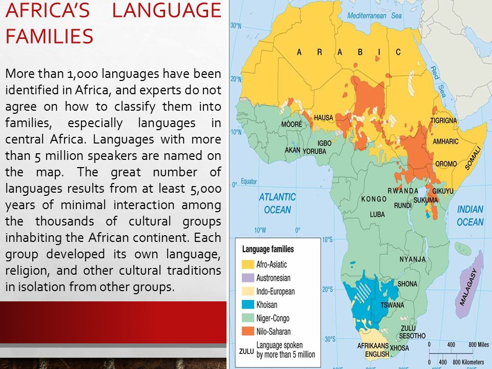 english language and african native language essay English language and african native language essay sample language is a great power which forms a huge part of people culture and identity, it's also enabling them to.