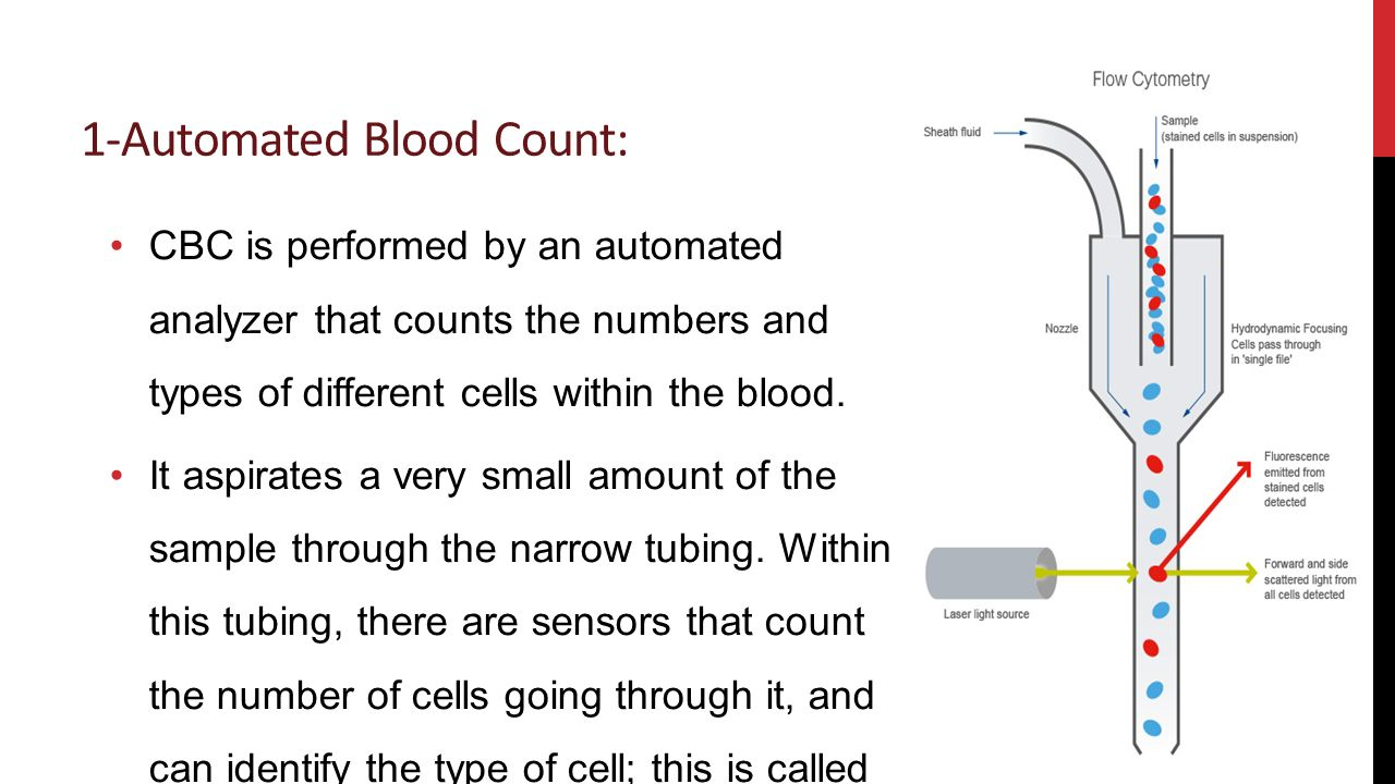 Complete Blood Count (CBC) - ppt video online download