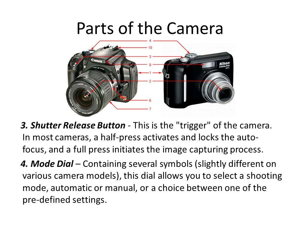 Nikon D40 Parts Diagram Block And Schematic Diagrams