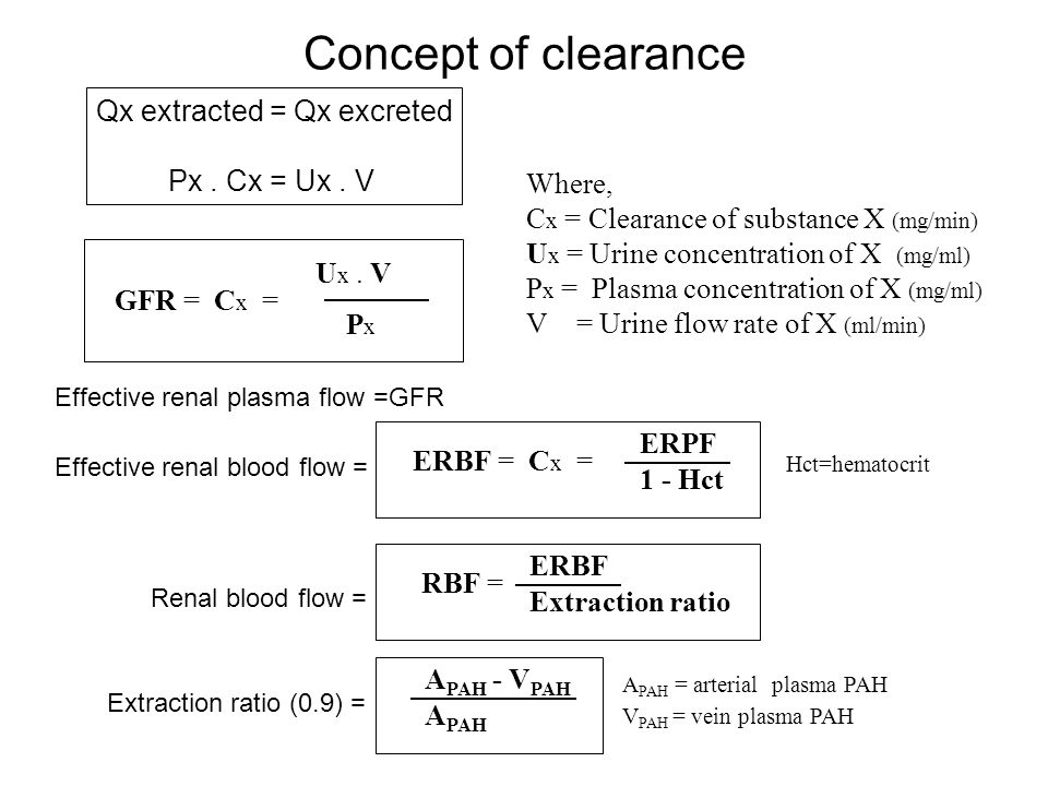 Review Of Normal Renal Physiology Ppt Video Online Download