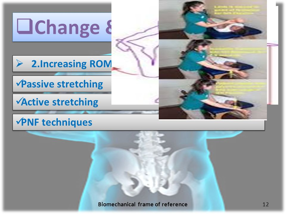 Biomechanical Frame of Reference - ppt video online download