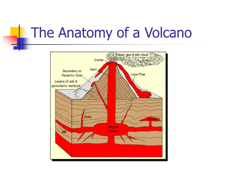 Types Structures And Eruptions Ppt Video Online Download