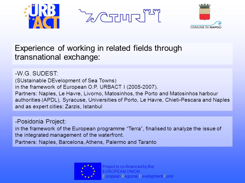 Experience of working in related fields through transnational exchange:
