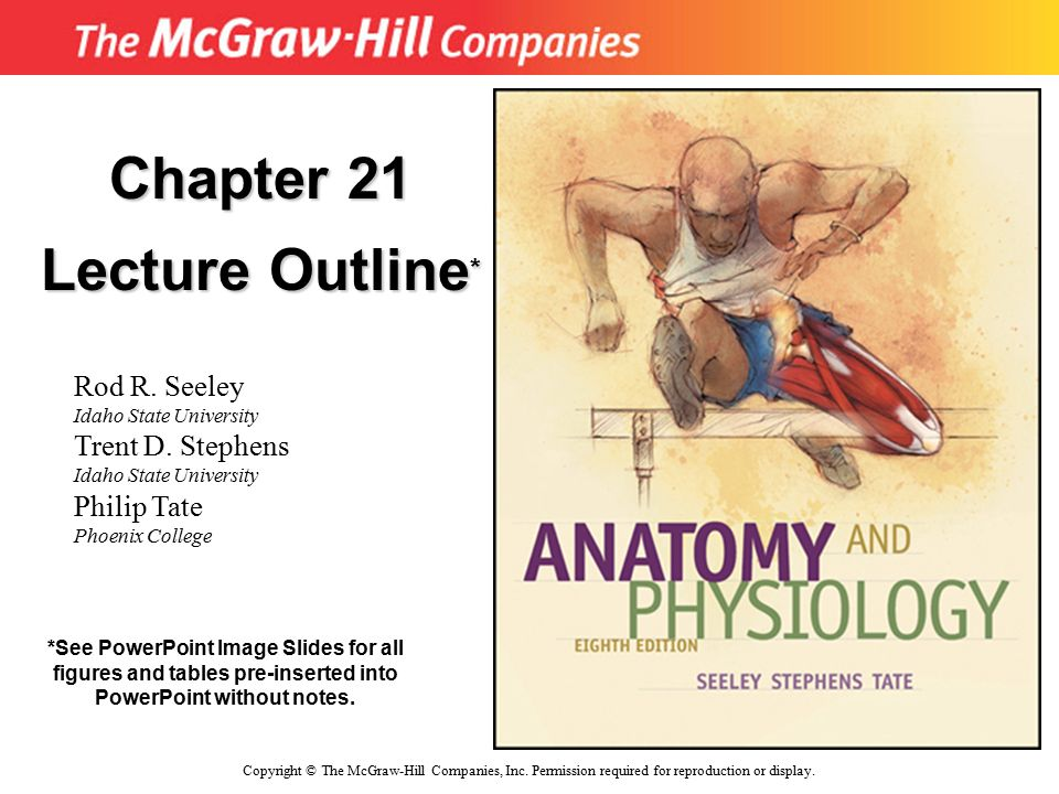 Chapter 21 Lecture Outline* - ppt download