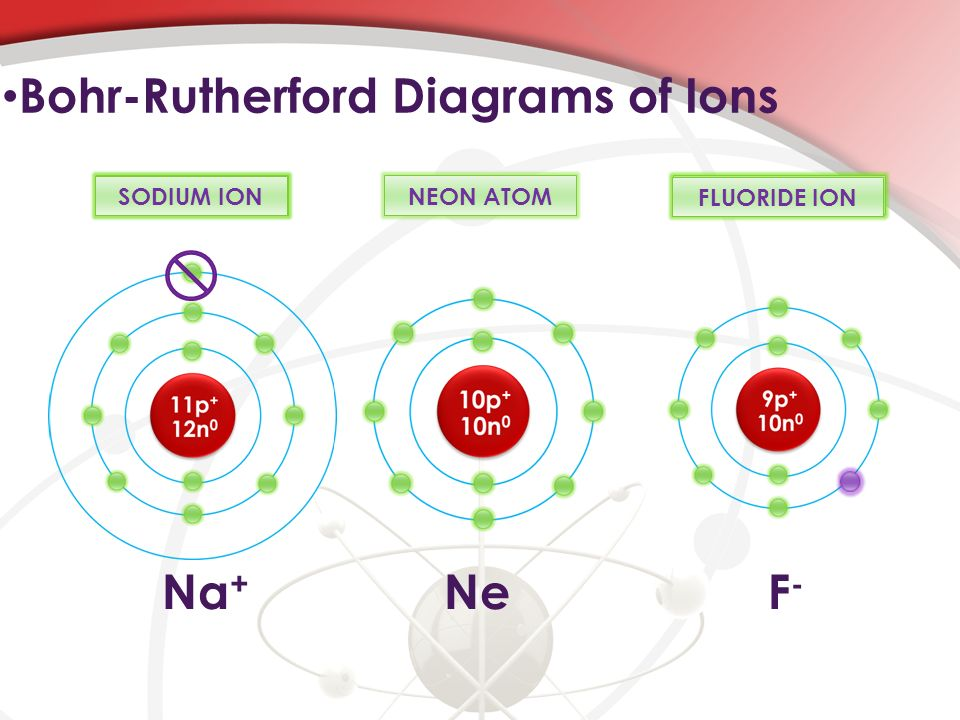 5 bohr-rutherford