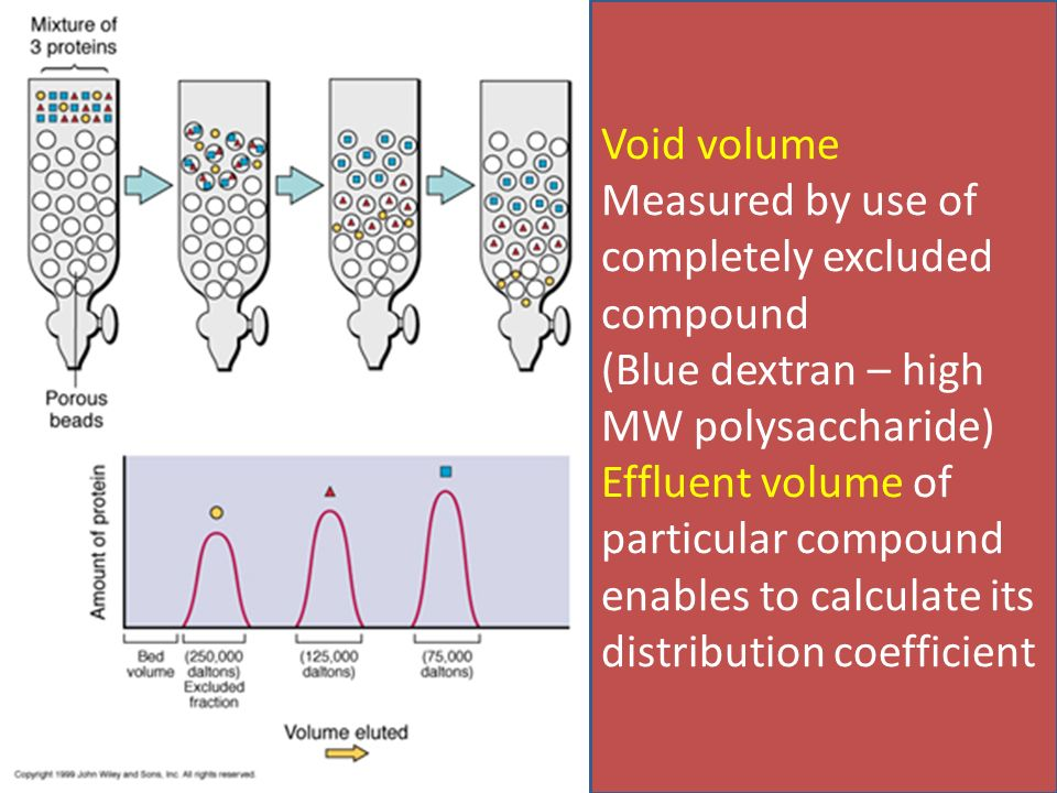 gel filtration chromatography size exclusion