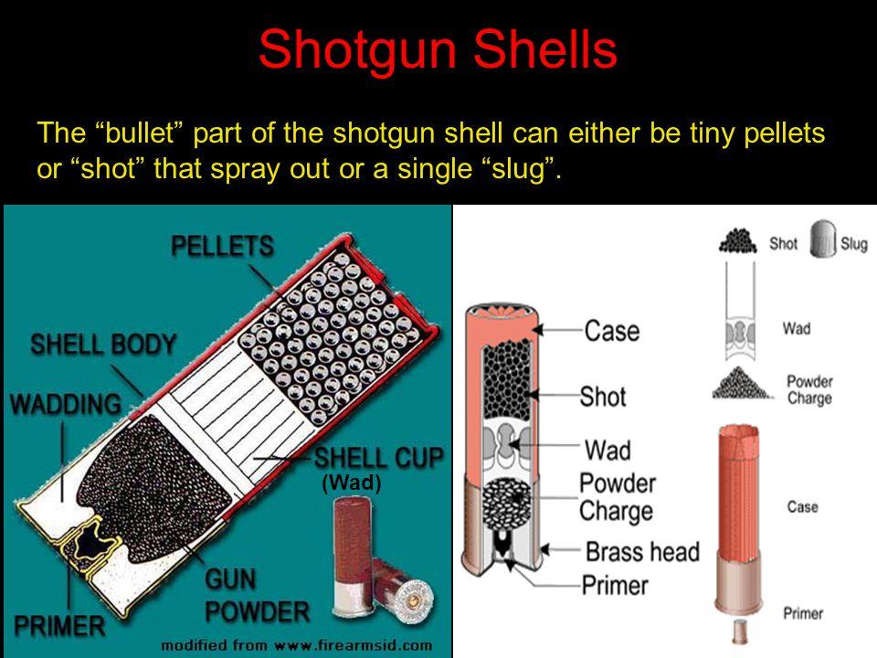 firearms and ballistics ppt video online download rh slideplayer com 12 GA Shotgun Shell Sizes Anatomy of a Shotgun Shell