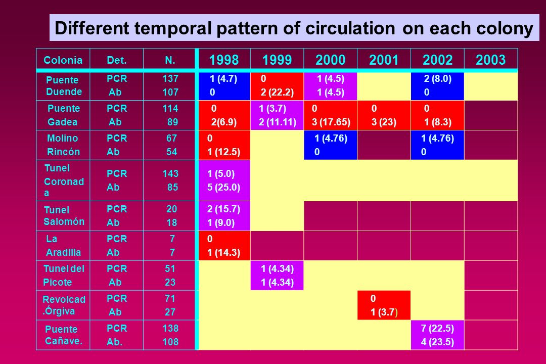 Different temporal pattern of circulation on each colony