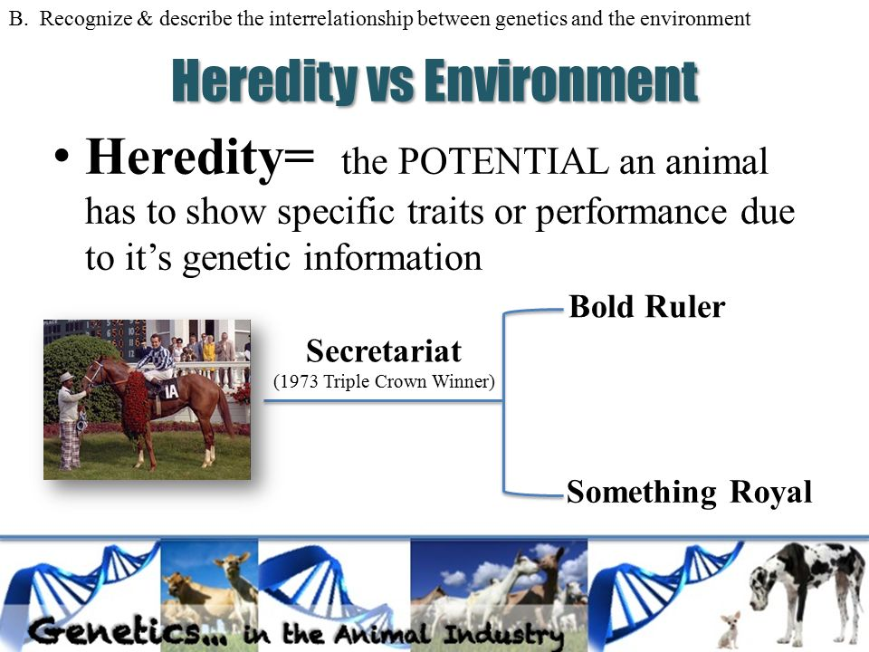 heredity vs environment