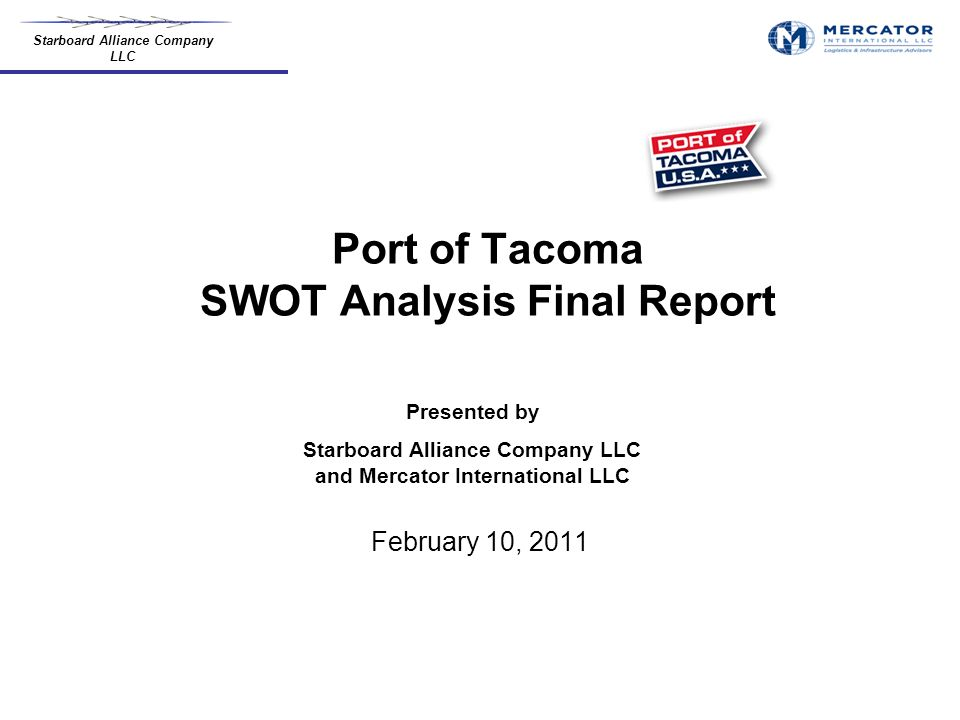 project report on swot analysis pdf