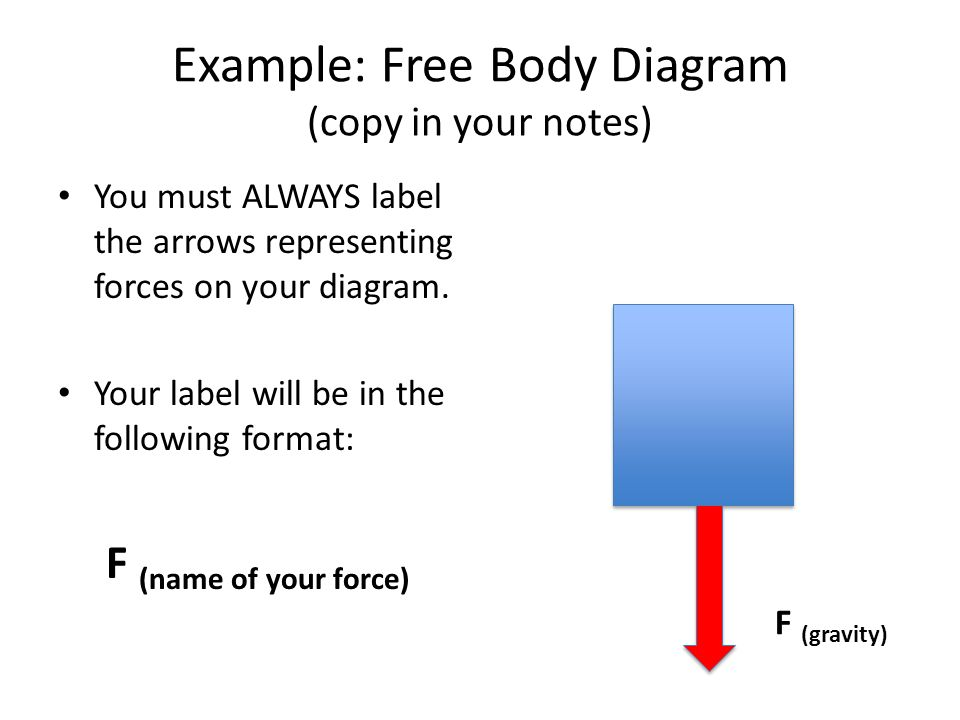 Air resistance and free body diagrams ppt video online download example free body diagram copy in your notes ccuart Choice Image
