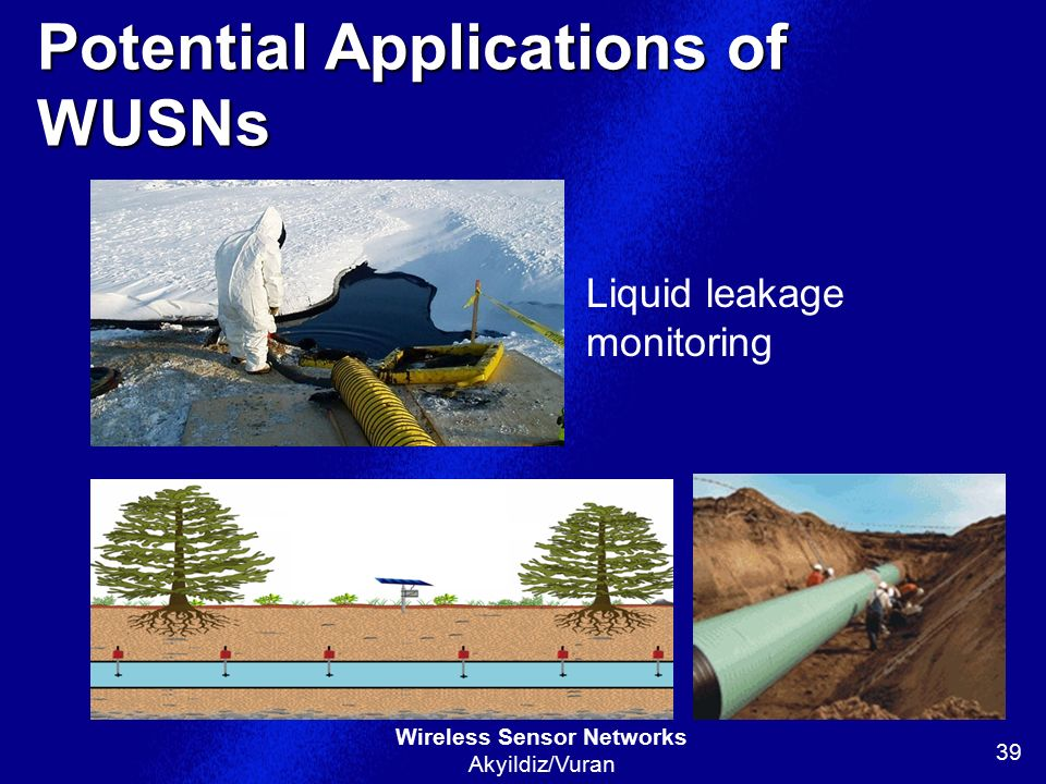 Potential Applications of WUSNs