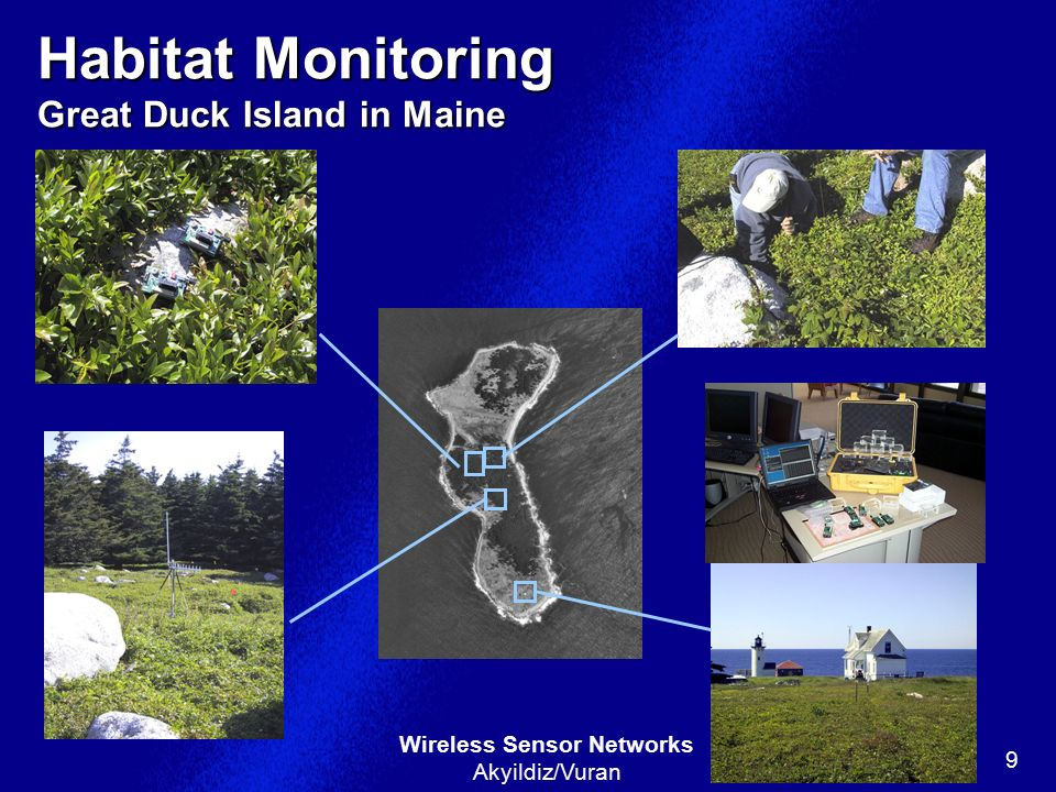 Habitat Monitoring Great Duck Island in Maine
