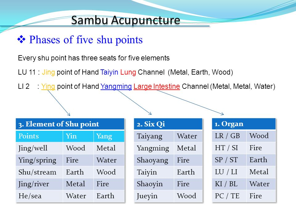 Sa-Am Acupuncture & Sambu Acupuncture - ppt video online