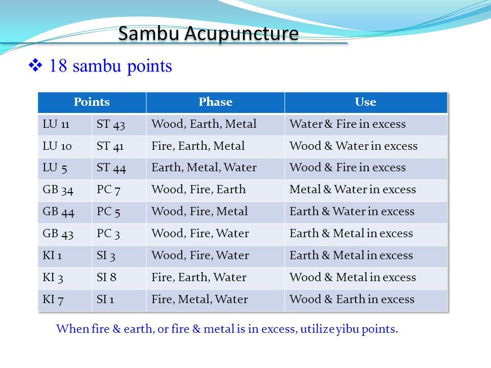 Sa-Am Acupuncture & Sambu Acupuncture - ppt video online