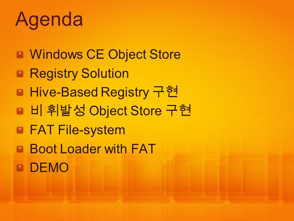 Agenda Windows CE Object Store Registry Solution