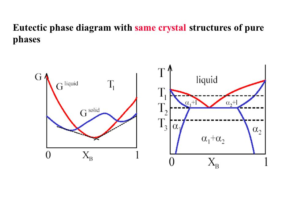 Thermodynamic Of Phase Diagram Ppt Download