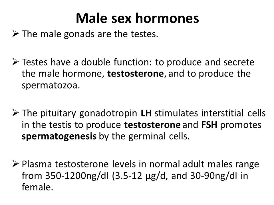 What is the male sex hormone picture 55